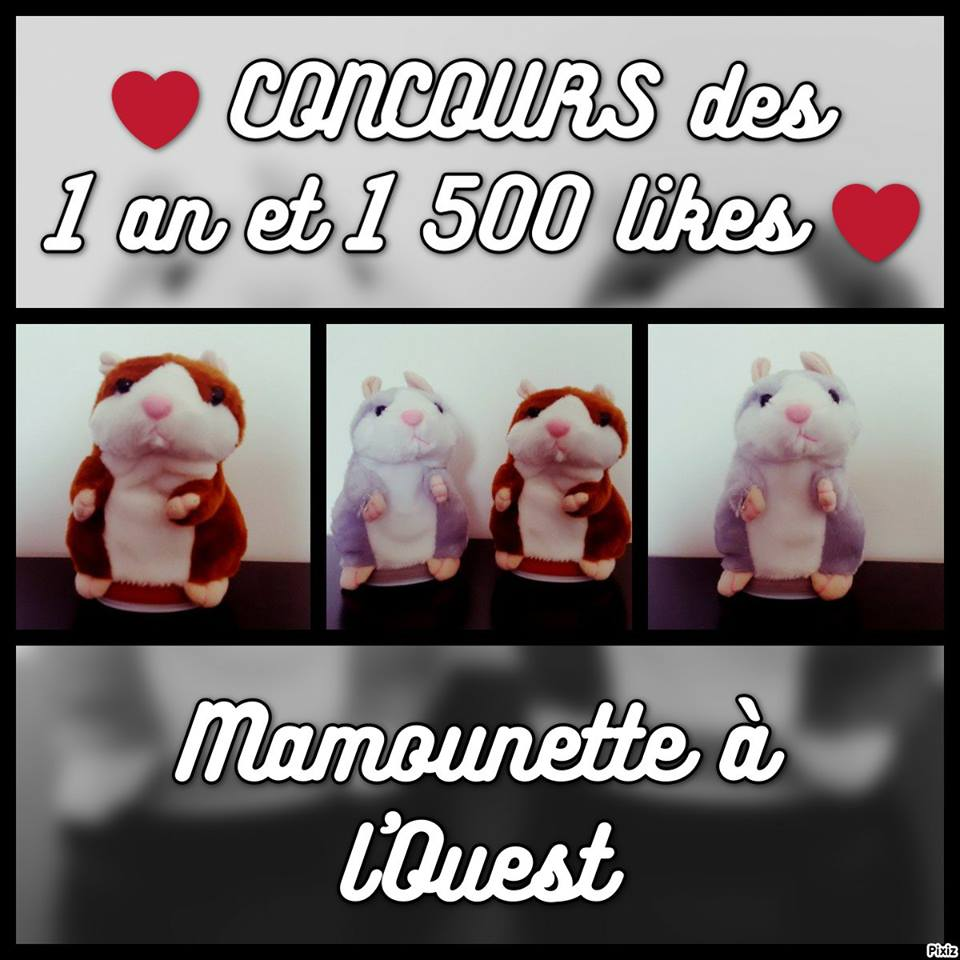 Concours 1 an 1500