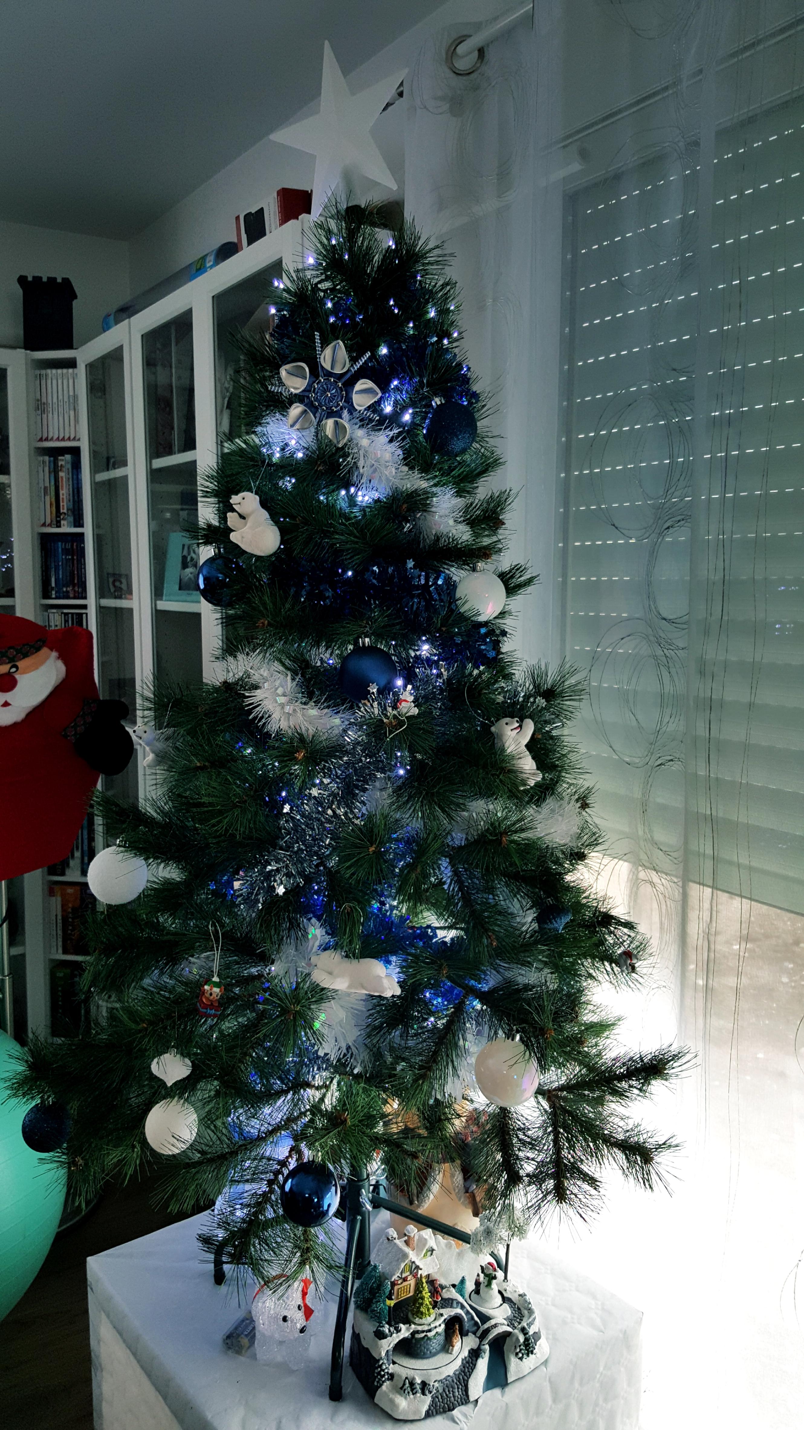 Notre sapin de Noël.jpg