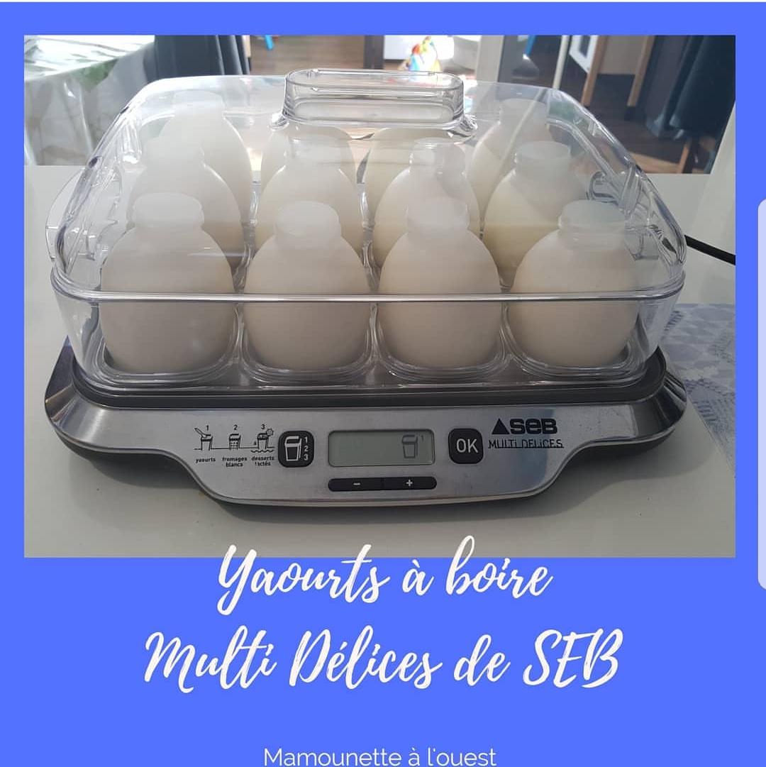 yaourts à boire maison.jpg