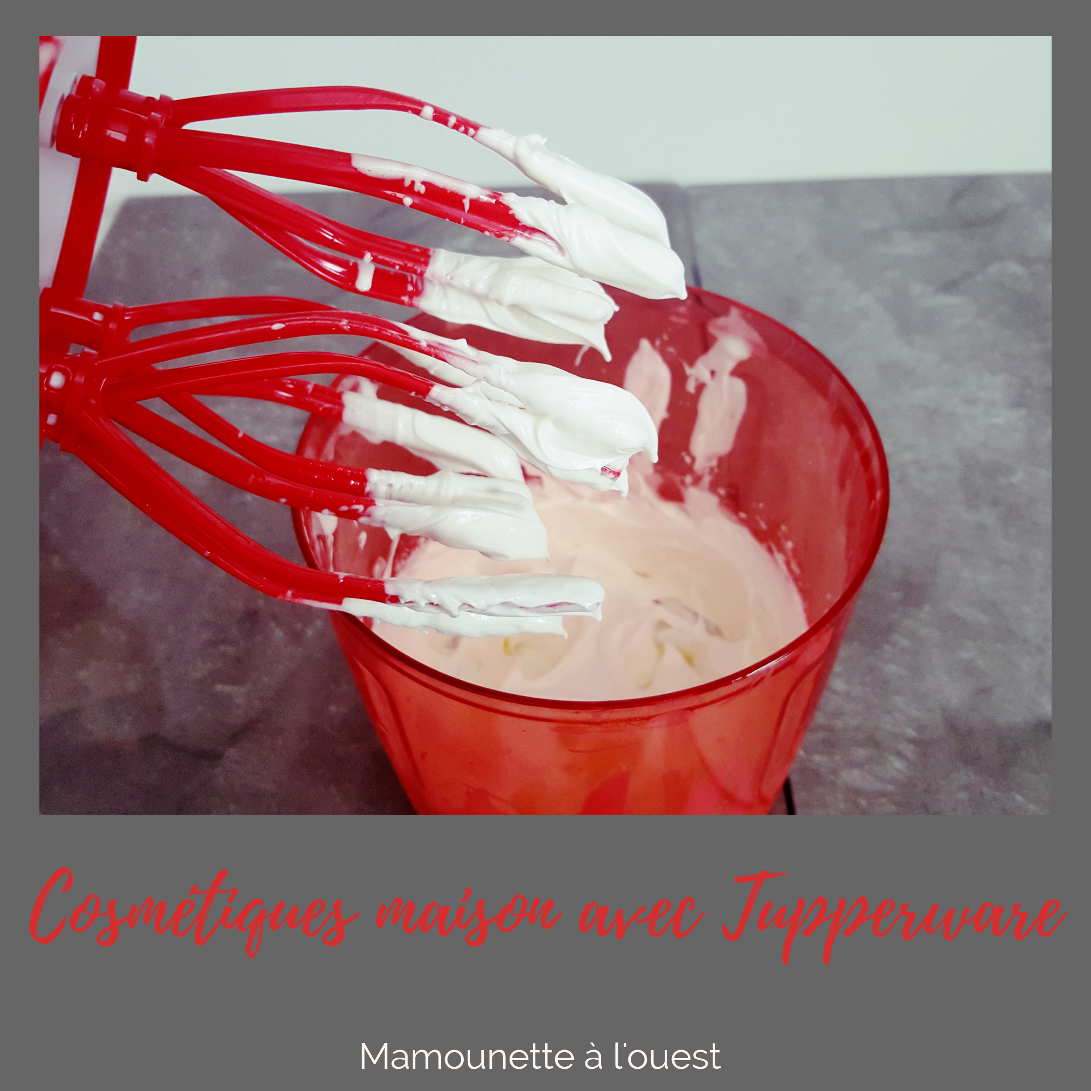 Crème hydratante maison au Speedychef.png