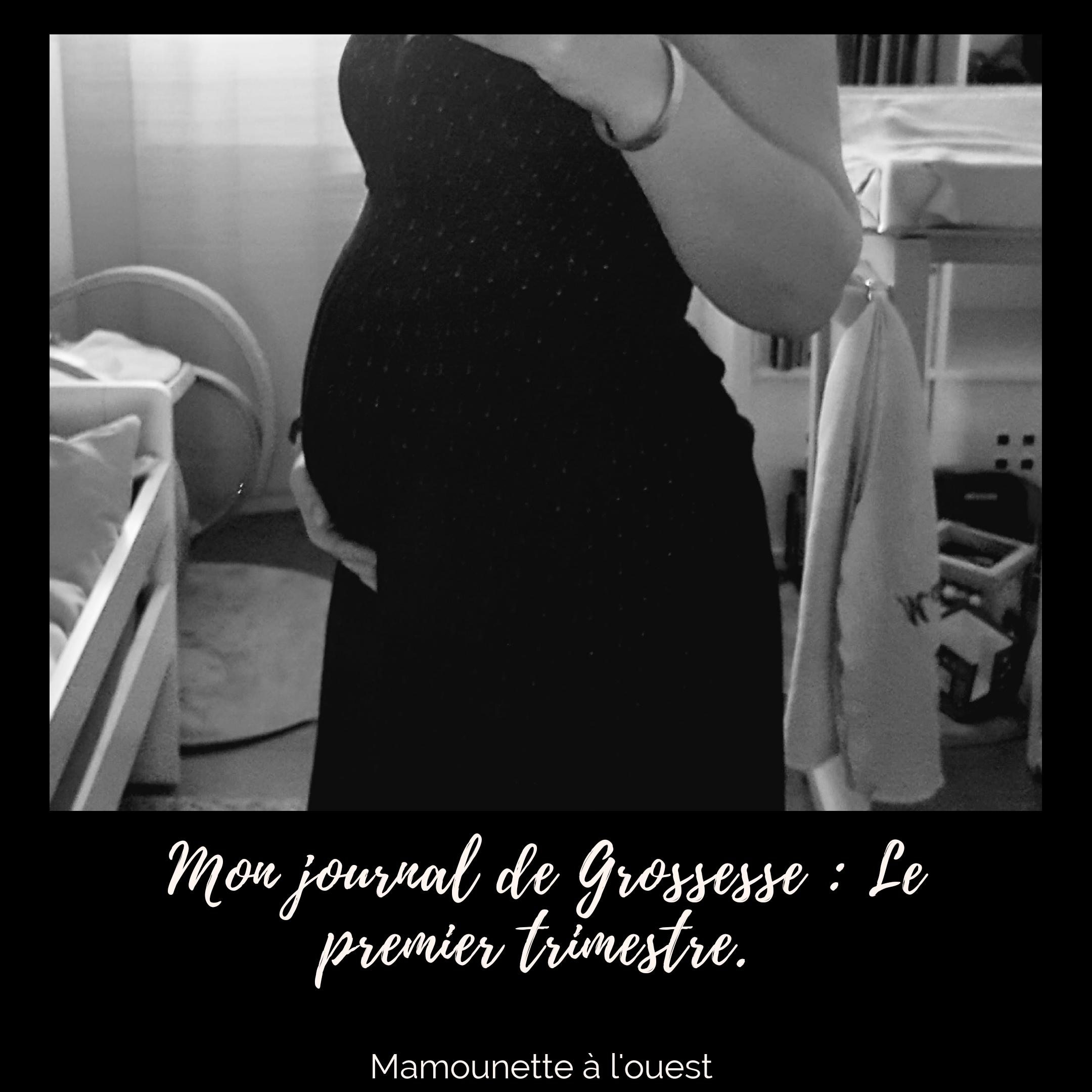 Mon journal de grossesse : Le premier trimestre