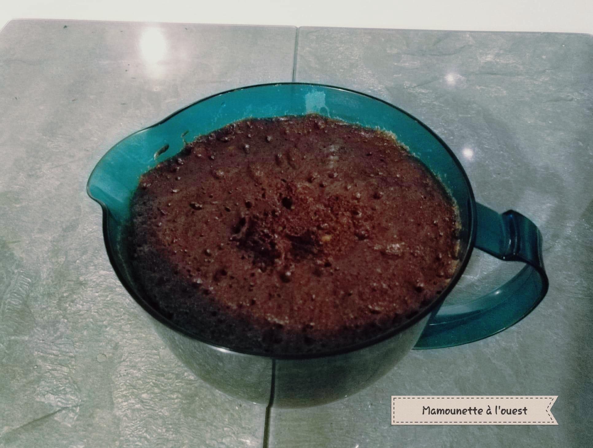 Le gâteau moelleux chocolat / noisettes au Microcook après cuisson.