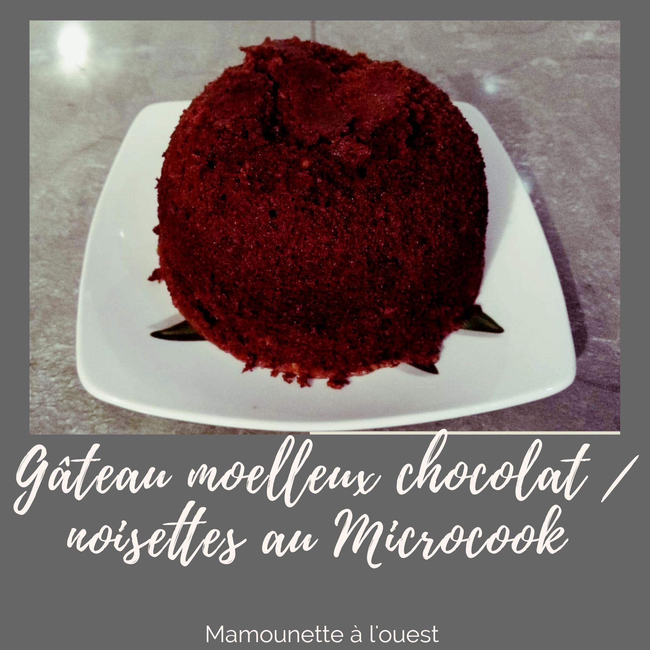 gâteau moelleux chocolat / noisettes au Microcook.png