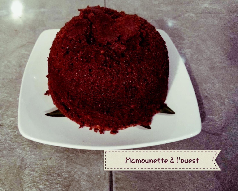 Le gâteau moelleux chocolat / noisettes au MicroCook cuit et démoulé.