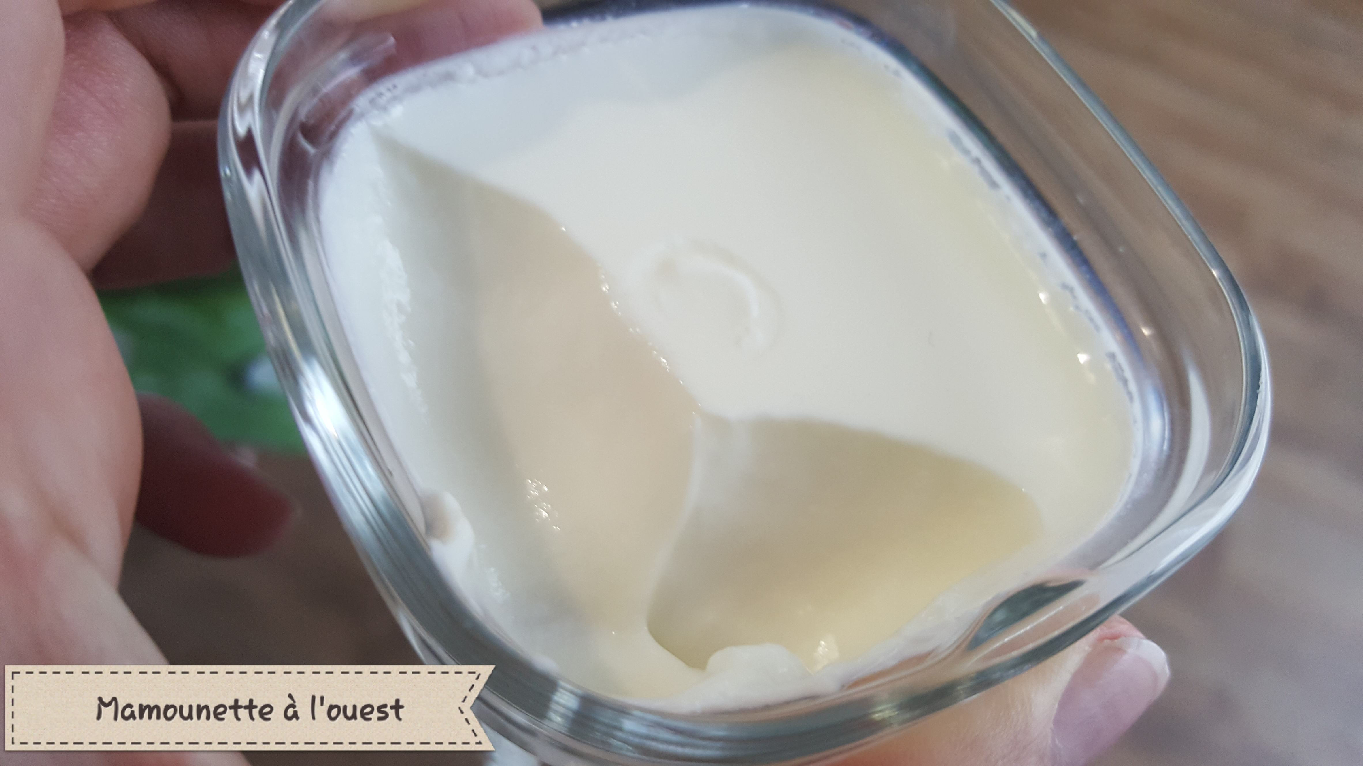 Yaourt maison au lait de brebis.