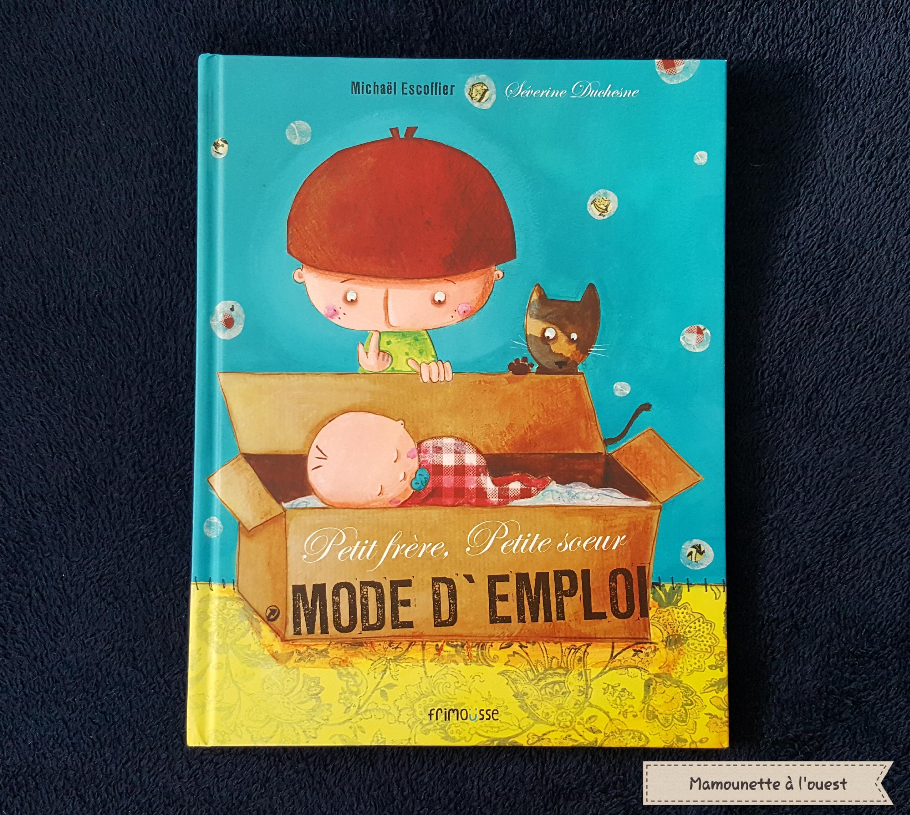 "livre ""Petit frère, petite sœur Mode d'emploi"""