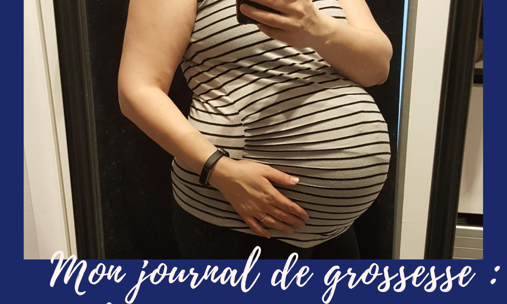 Mon journal de grossesse : Le troisième trimestre.